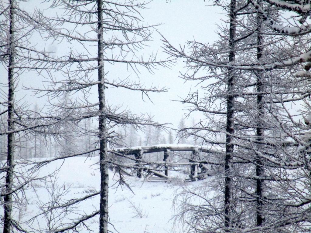 A railway bridge.